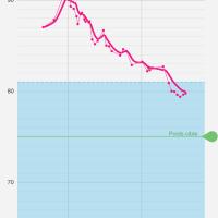 Zéro déchet et perte de poids, quel rapport ?