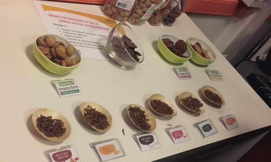 IdeasDays-micronutris-insectes