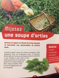 soupe orties
