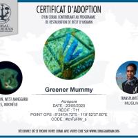 11 ans de mariage, adopte un corail !